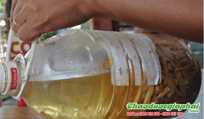 Ngâm rượu cây lược vàng