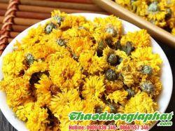 Hoa Cúc Vàng Khô